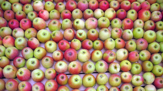 tons of apples