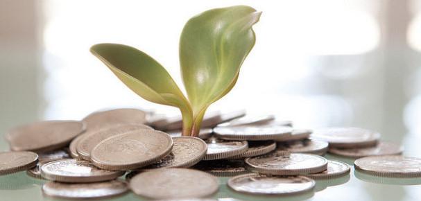 Plant Money