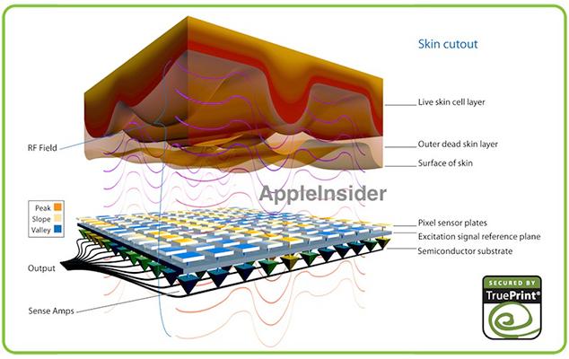iphone 5S fingerprint recognition chip