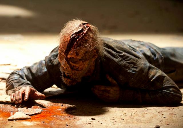 The Walking Dead, zombie