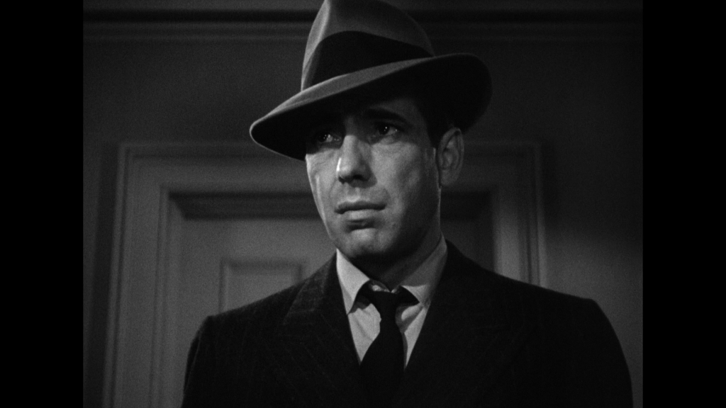 Maltese Falcon