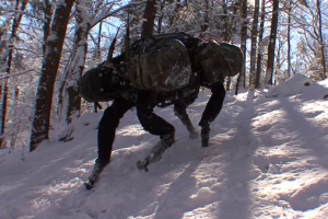 10 Amazing Robots That Will Make You Jump for Joy or Run in Terror