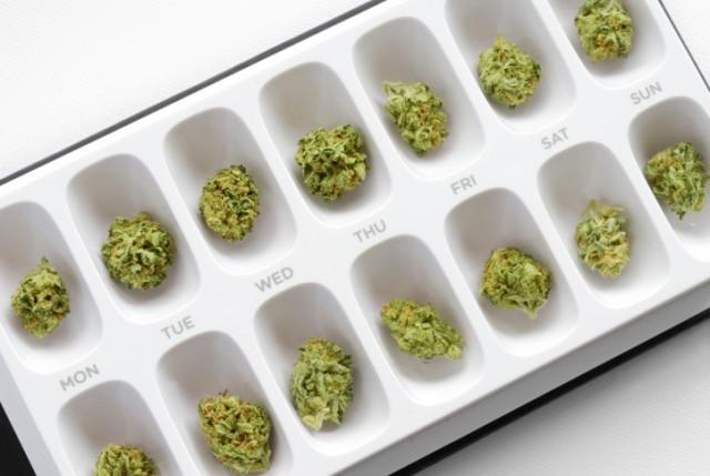 Marijuana Is Not, Repeat Not, a Gateway Drug