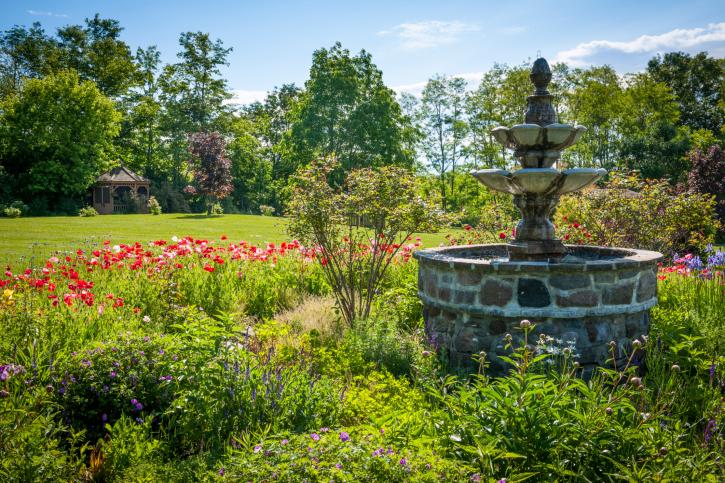 backyard ideas for the summer