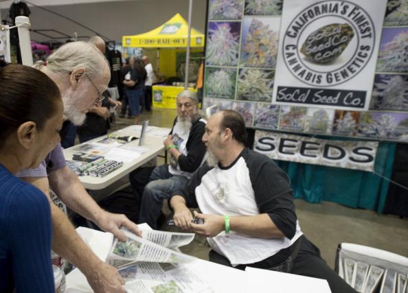 Seed growers at a marijuana farmer's market