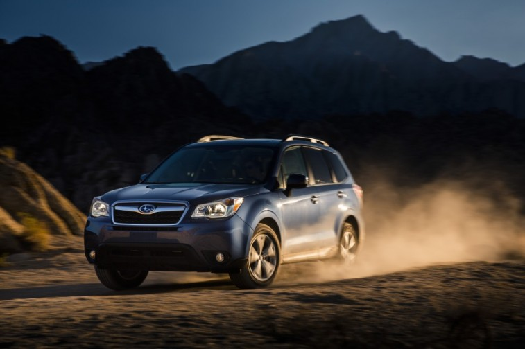 Forester_029