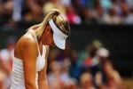 Ten Years In, What Happened to Maria Sharapova?