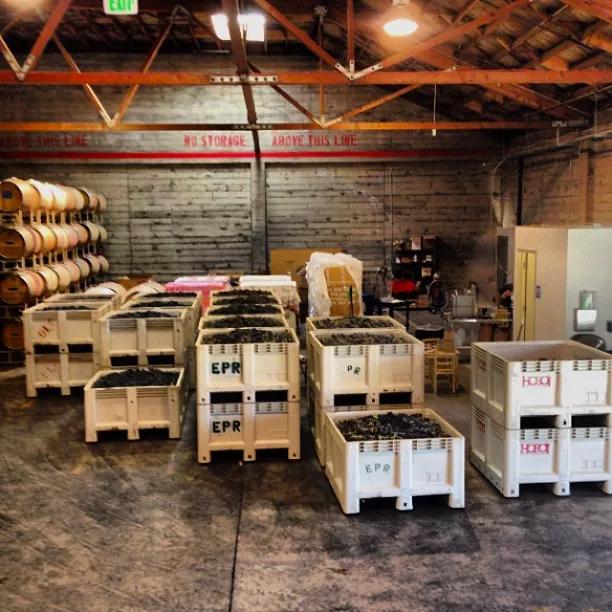 Wine fermentation vessels