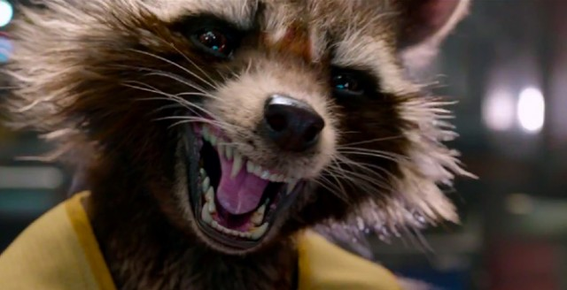 Rocket Raccoon in Guardians of the Galaxy | Source: Marvel
