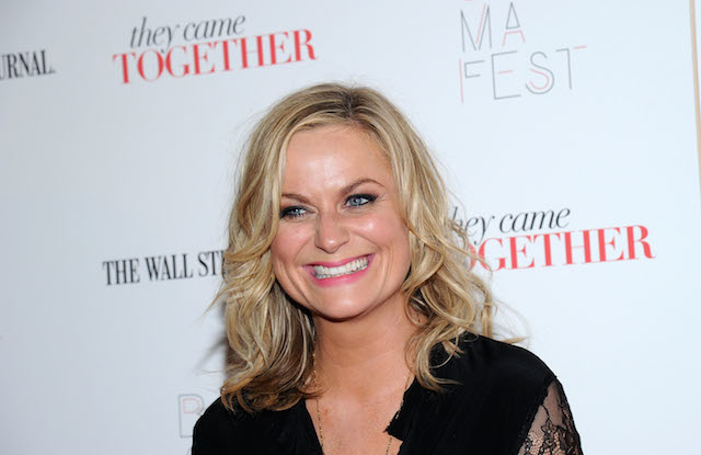 Amy Poehler's net worth is through the roof.