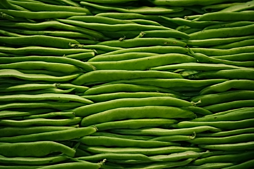 Green beans, haircots verts