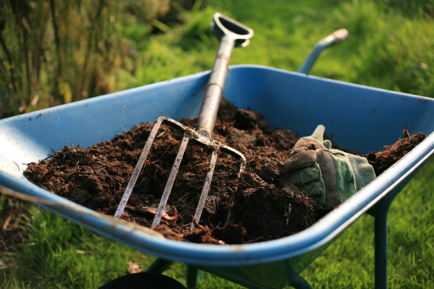 wheelbarrow with dirt and rake