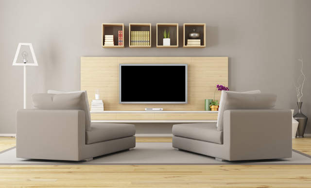 Living room with television