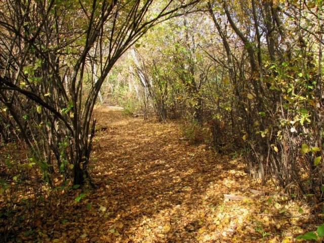 Gateway National Recreation Area   Source: National Park Service