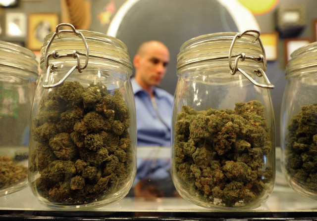 Jars full of medical marijuana
