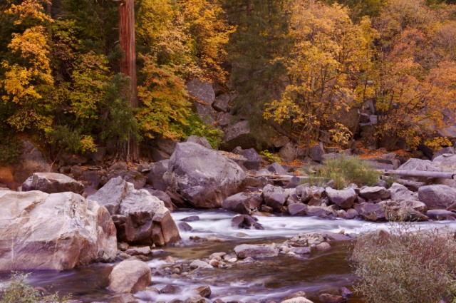 Merced River, Yosemite, Fall