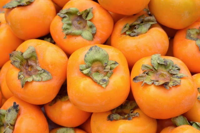 Fresh persimmons pair excellently with goat cheese and ricotta for an appetizer
