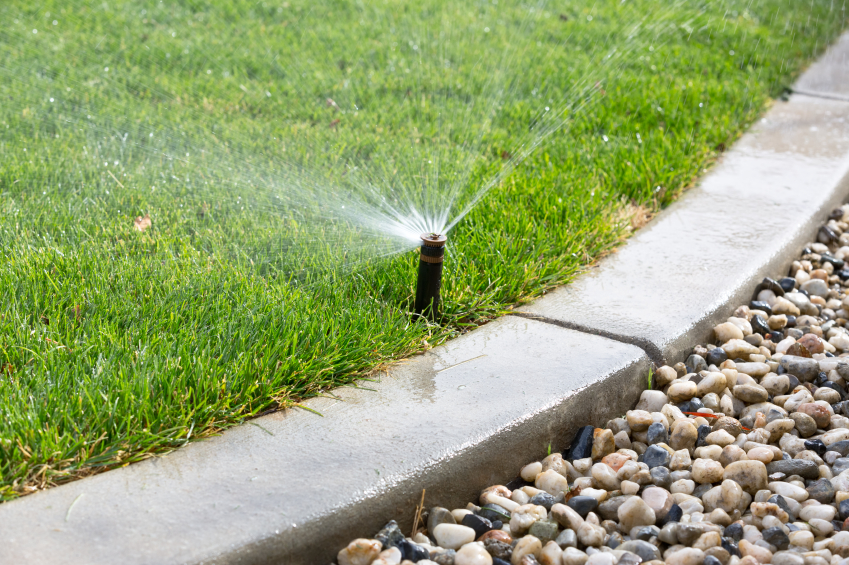 A sprinkler in a well-manicured lawn