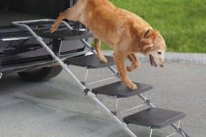 Remembering the 10 Worst Auto Accessories on SkyMall
