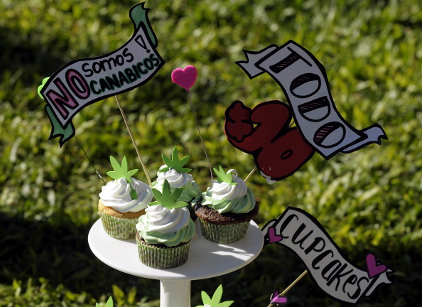 View of marijuana cupcakes for sale