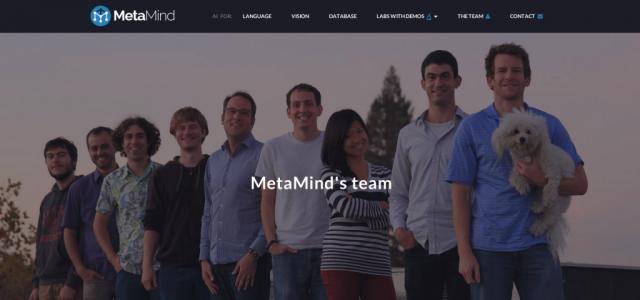 MetaMind team
