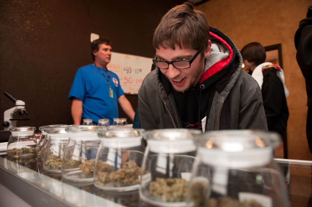 A marijuana enthusiast chooses cannabis types at a store