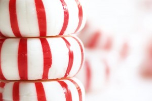 Peppermint Grooming Products That Will Put a Pep in Your Step