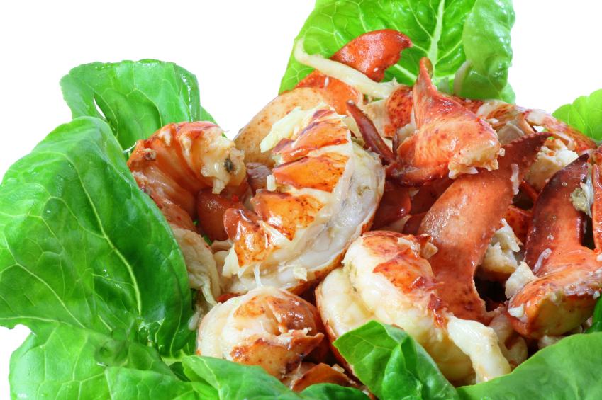 Lobster Meat