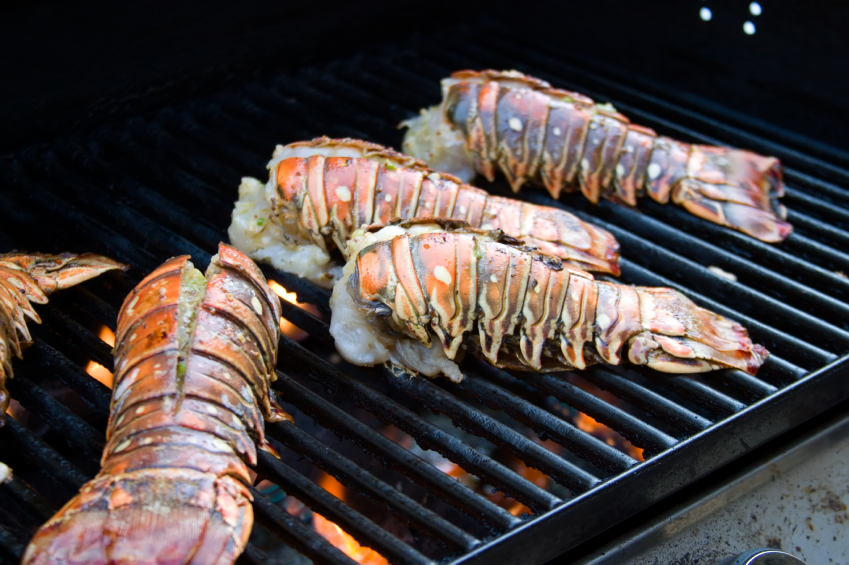 Grilled Lobster tails