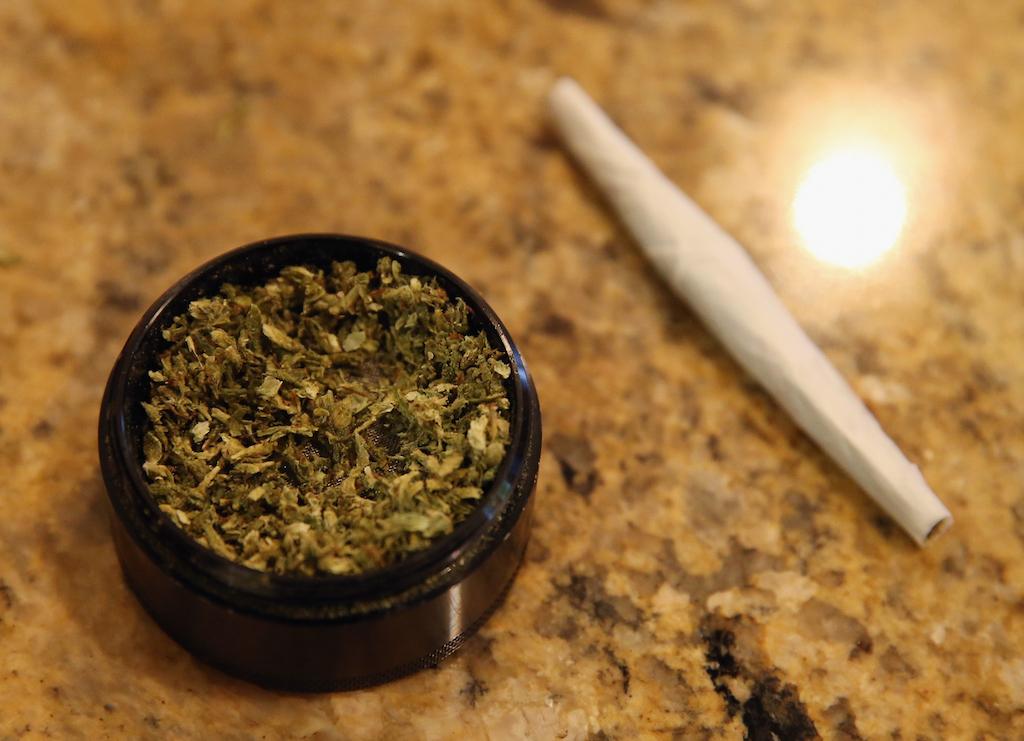 A closeup view of marijuana