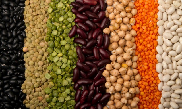 Beans and seeds in a row