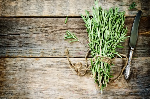 Fresh bundle of rosemary