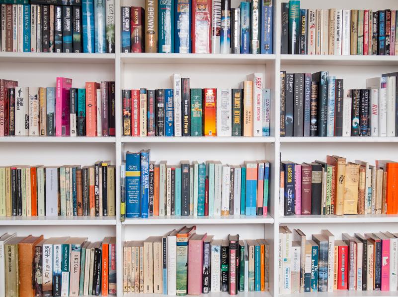 bookshelves filled with books