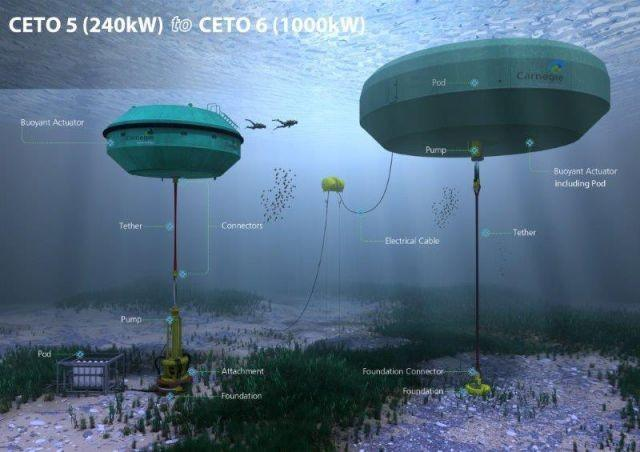 Source: Carnegie Wave Energy