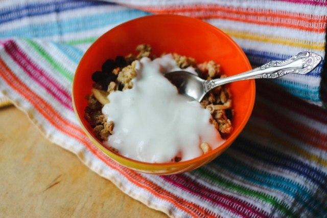 Granola, muesli, yogurt