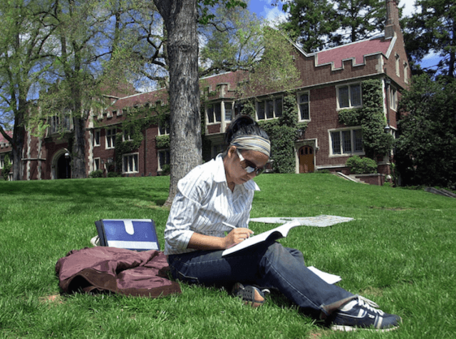 person sitting on grass doing homework
