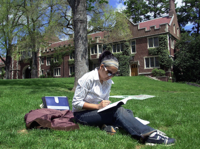 Student studying outside on grass