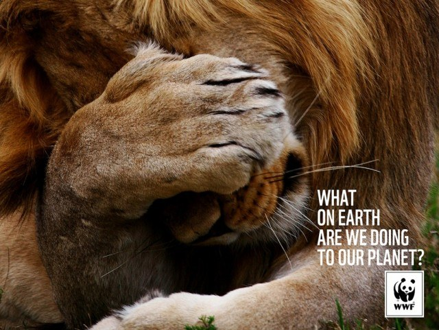 Source: WWF