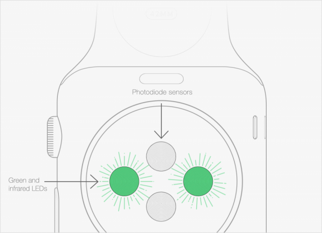 Apple Watch photodiode sensors and green and infrared LEDs