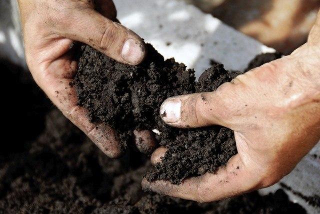 A farmer works the soil