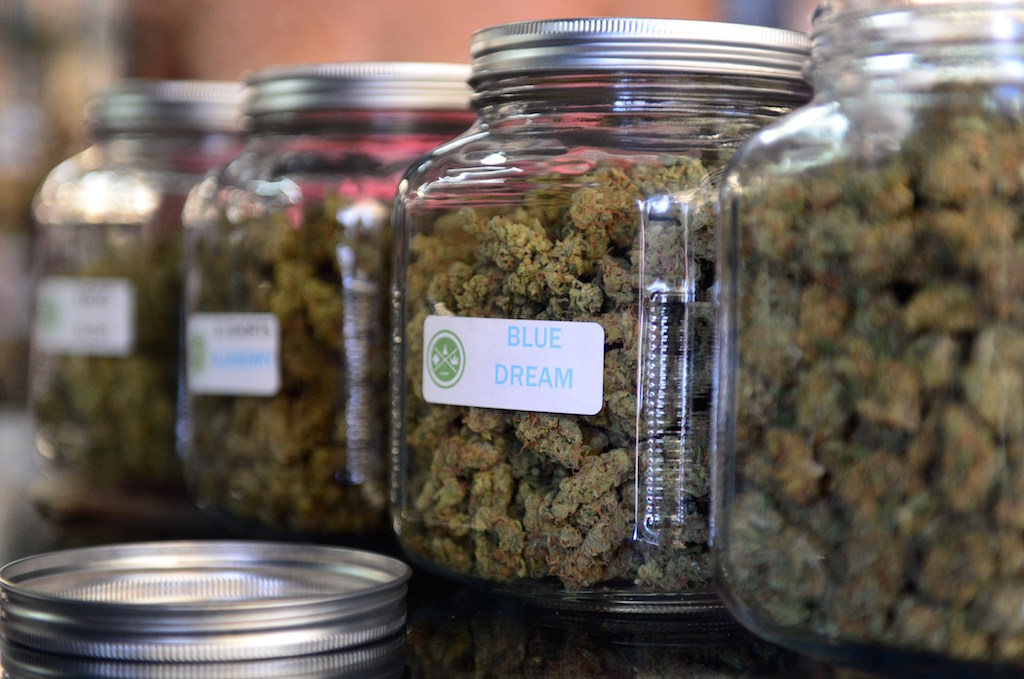 Jars of cannabis in a retail store