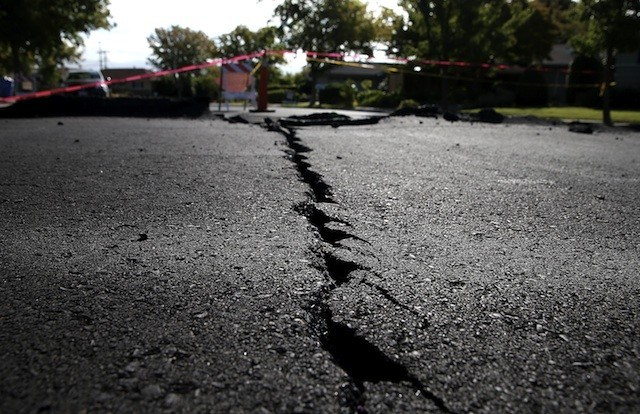 a crack in asphalt