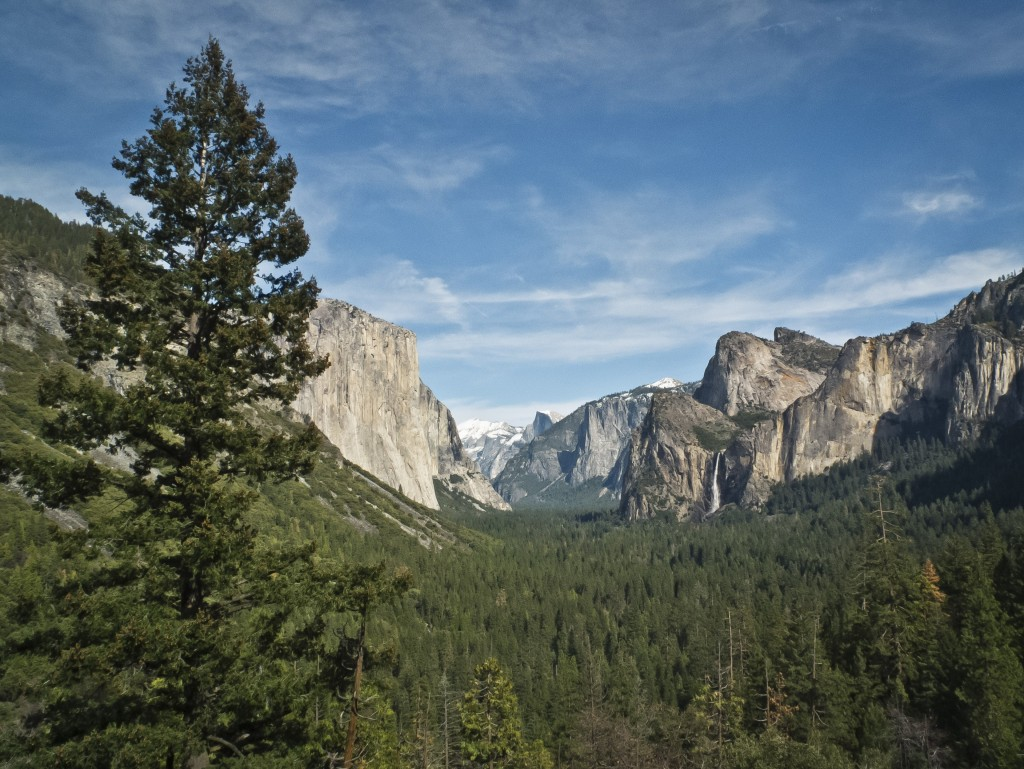 yosemite national park mature personals Best things to do in yosemite that's because yosemite valley features much of the park's top housing about 500 mature giant sequoia trees that are.