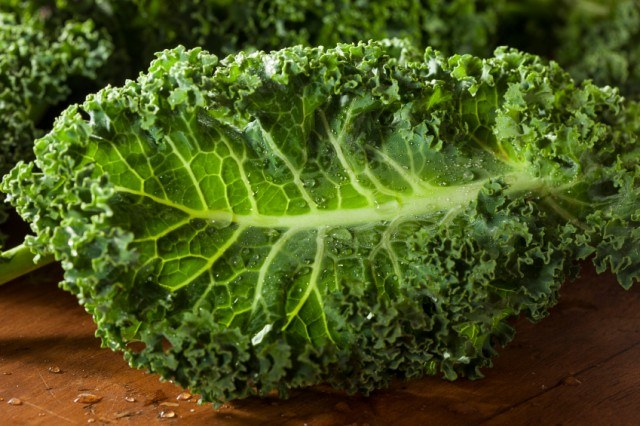 Kale for a salad | Source: iStock