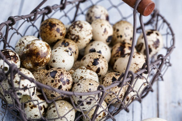 Quail eggs in a silver metal basket.