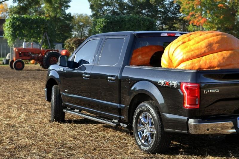 f150-pumpkin05