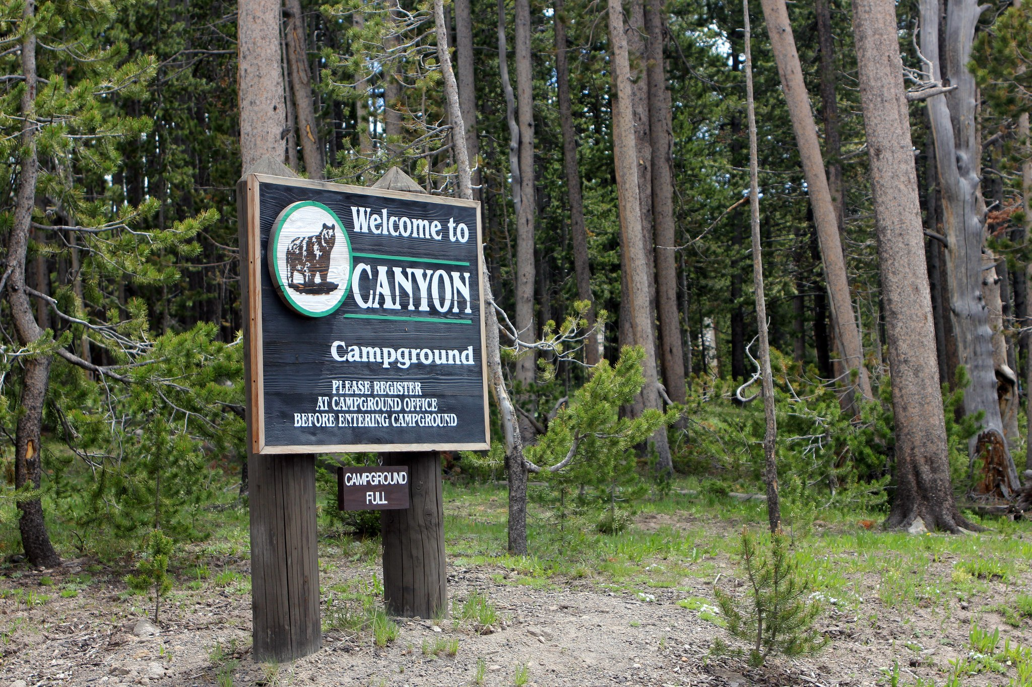 campground at yellowstone national park
