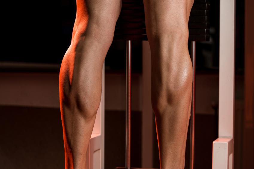 a shot of muscular calves