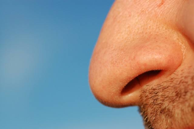 Close view of man's nose