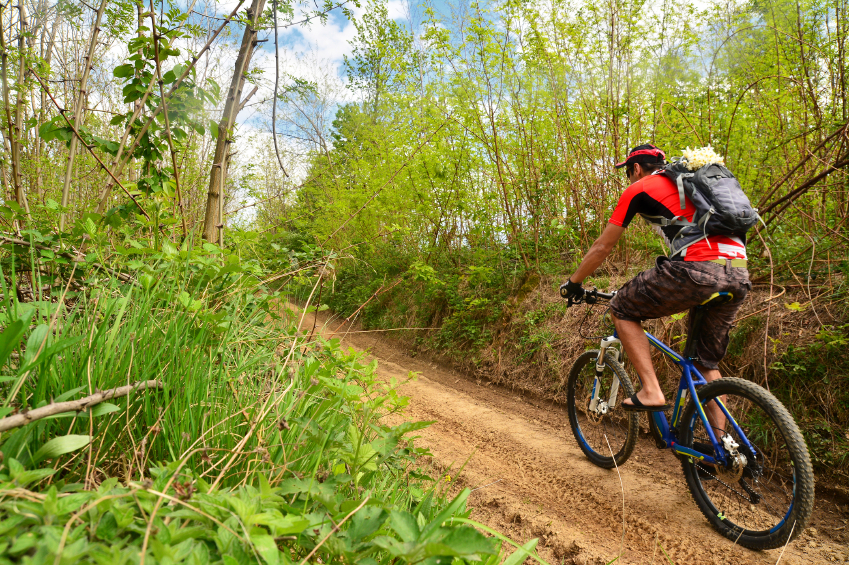 mountain biking, trail